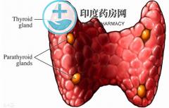 甲状腺癌的分类,要正确了解