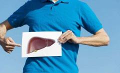 乙肝停药后需要注意复发