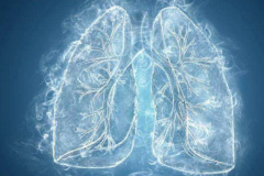 肺癌晚期能吃的食物